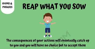 Image result for reap what you sow