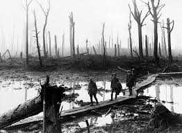 Woods in Wartime - Trees on the Front Line - Picturing the Great ...