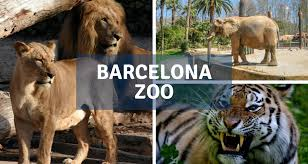 The Zoo of Barcelona | Barcelona-Home