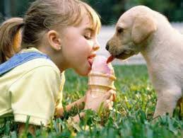 Are all pets harmful for kids