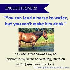 "You can lead a horse to water, but you can't make him drink."" – English  proverb 