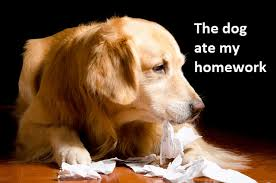 The dog ate my homework - Family and Fertility Law